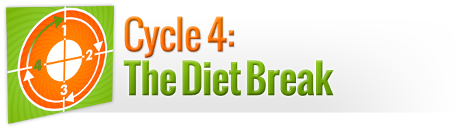 Diet plans to lose fat fast photo 1